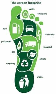 the carbon footprint2